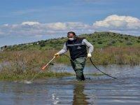 Aliağa Belediyesi Sivrisinek ile Mücadelesini Sürdürüyor
