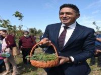 Aliağa'da 'Tarla Günü' Etkinliği Düzenlendi